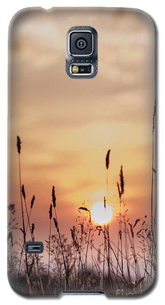 Rural Sunset Galaxy S5 Case