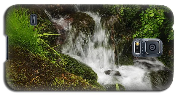 Rushing Mountain Stream And Moss Galaxy S5 Case