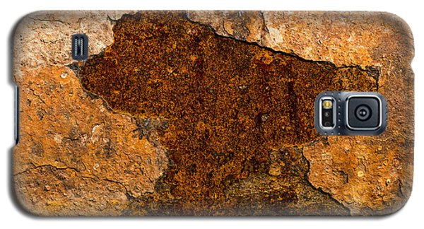 Rust Galaxy S5 Case