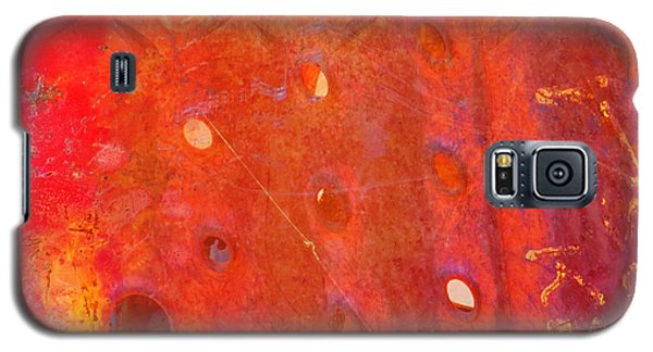 Rusted Glory 10 Galaxy S5 Case by Desiree Paquette