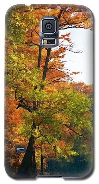 Rustic Autumn Galaxy S5 Case