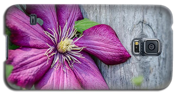 Galaxy S5 Case featuring the photograph Rustic Clematis by Susan  McMenamin