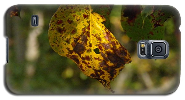 Galaxy S5 Case featuring the photograph Rusty Leaf by Nick Kirby