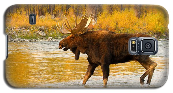 Galaxy S5 Case featuring the photograph Rutting Bull by Aaron Whittemore