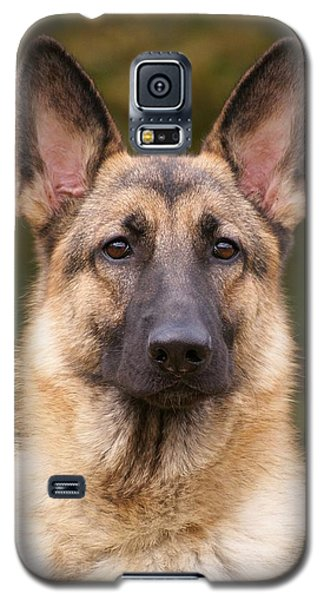 Sable German Shepherd Dog Galaxy S5 Case