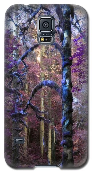 Galaxy S5 Case featuring the photograph Sacred Forest by Amanda Eberly-Kudamik