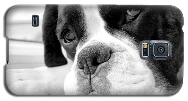 Sad Boxer Dog Galaxy S5 Case by Mike Taylor