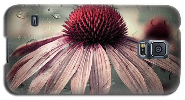 Daisy Galaxy S5 Case - Sad Solitude by Aimelle