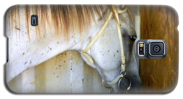 Galaxy S5 Case featuring the photograph Saddle Break by Kathy Barney