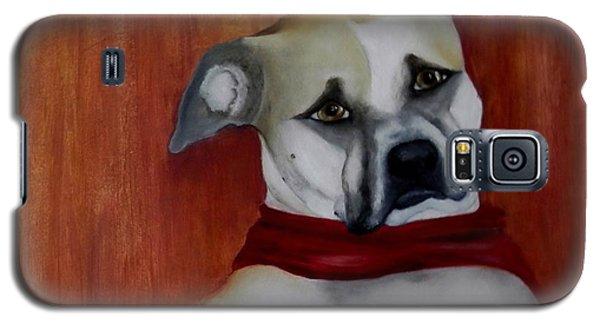 Sadie Galaxy S5 Case by Annamarie Sidella-Felts