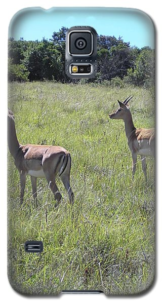 Safari Wildlife 2 Galaxy S5 Case
