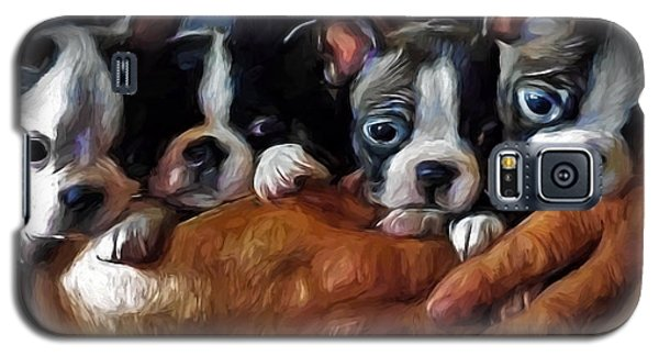Safe In The Arms Of Love - Puppy Art Galaxy S5 Case by Jordan Blackstone