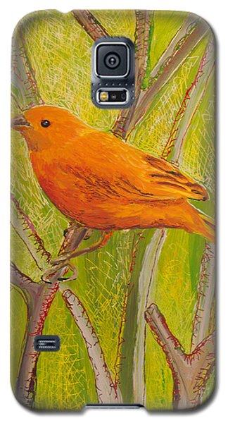Saffron Finch Galaxy S5 Case