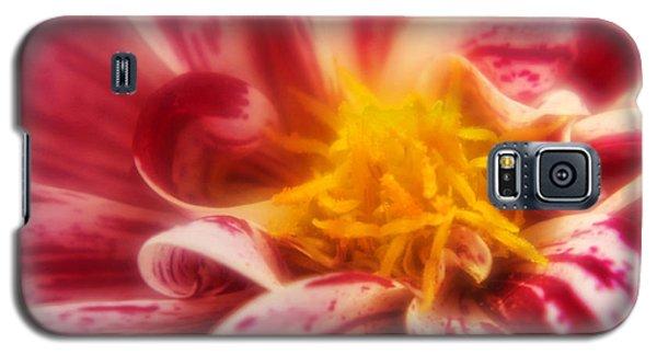 Saffron Galaxy S5 Case by Graham Hawcroft pixsellpix