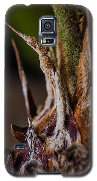 Sago Palm 1 Galaxy S5 Case
