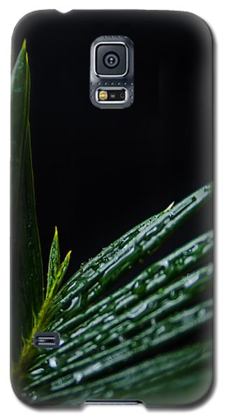 Sago Palm 2 Galaxy S5 Case