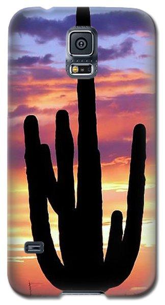 Saguaro At Sunset Galaxy S5 Case by Elizabeth Budd