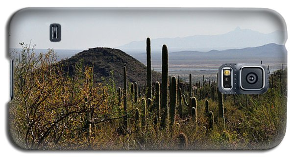 Galaxy S5 Case featuring the photograph Saguaro Cactus And Valley by Diane Lent