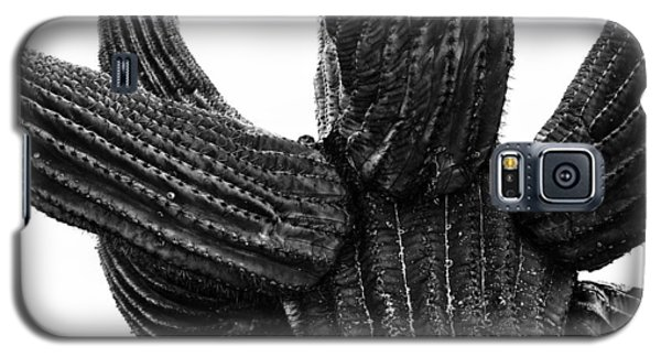 Saguaro Cactus Black And White 3 Galaxy S5 Case