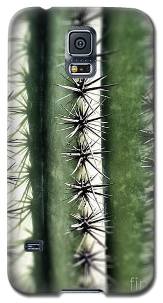 Saguaro Catus Needles Galaxy S5 Case
