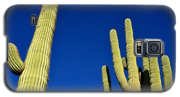 Galaxy S5 Case featuring the photograph Saguaro National Forest Tucson Az by Diane Lent