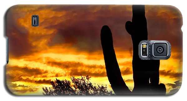 Saguaro Silhouette  Galaxy S5 Case by Robert Bales