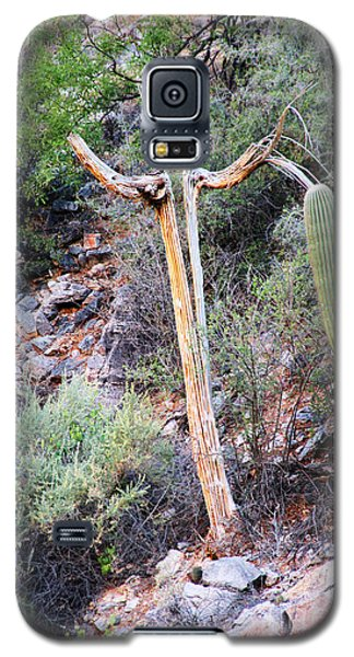 Saguaro Skeleton Galaxy S5 Case