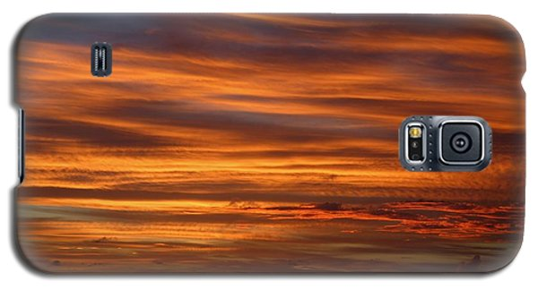 Sailor's Delight Galaxy S5 Case by Living Color Photography Lorraine Lynch