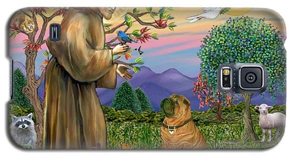 Saint Francis Blesses A Chinese Shar Pei Galaxy S5 Case