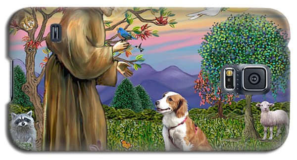 Saint Francis Blesses A Welsh Springer Spaniel Galaxy S5 Case
