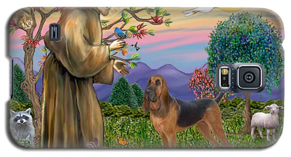 Saint Francis Blessing A Bloodhound Galaxy S5 Case