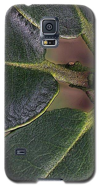 Galaxy S5 Case featuring the photograph Saint Michael The Archangel by Jean OKeeffe Macro Abundance Art