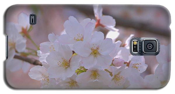 Galaxy S5 Case featuring the photograph Sakura by Rachel Mirror