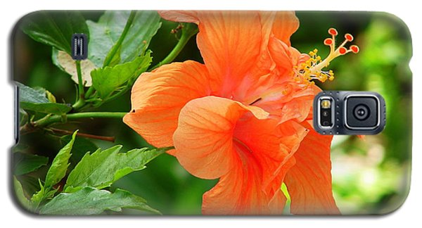 Salmon Hibiscus Galaxy S5 Case