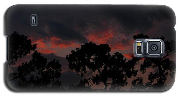 Galaxy S5 Case featuring the photograph Salmon Sunset by Greg Patzer