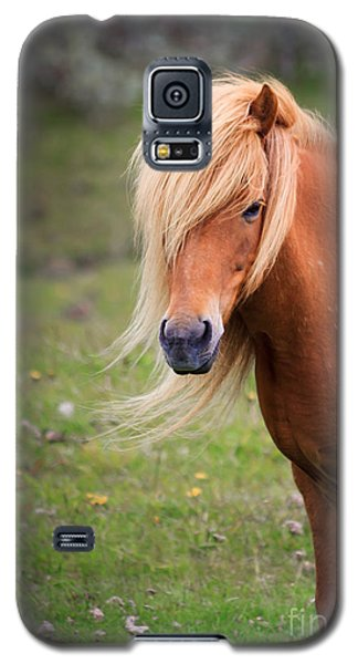 Galaxy S5 Case featuring the photograph Salon Perfect Pony by Peta Thames