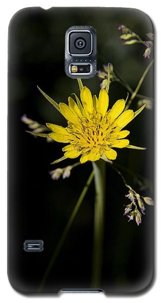 Salsify And Grass Galaxy S5 Case