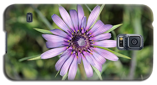 Galaxy S5 Case featuring the photograph Salsify Flower by George Atsametakis