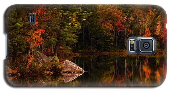 Saltmarsh Pond Galaxy S5 Case