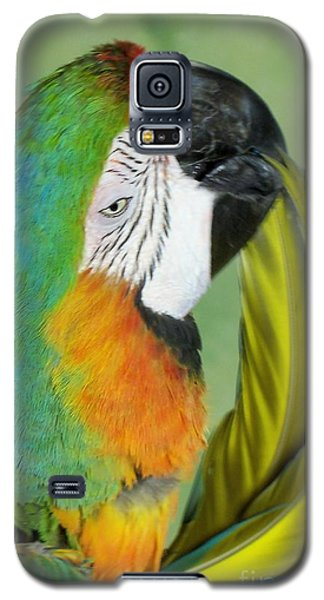 Salute I Am Blowing You A Kiss Galaxy S5 Case by Lingfai Leung