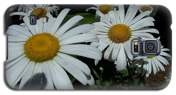 Salute The Sun Galaxy S5 Case by Marilyn Zalatan