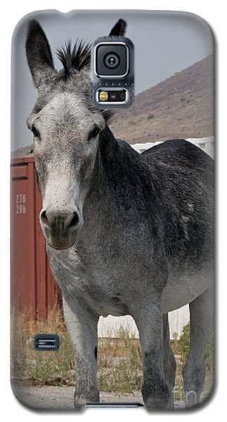 Sam And Old Train Cars Galaxy S5 Case