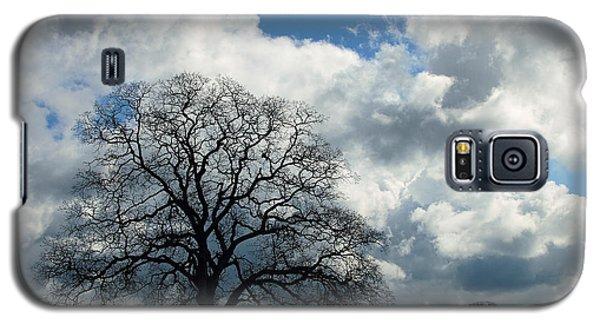 Same Tree Many Skies 13 Galaxy S5 Case