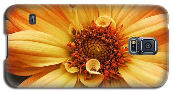 San Francisco Flower Galaxy S5 Case