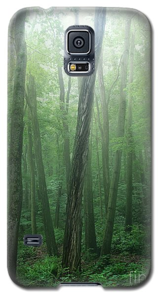 Sanctuary Galaxy S5 Case by Kathi Mirto