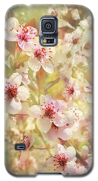 Sand Cherry Flourish Galaxy S5 Case