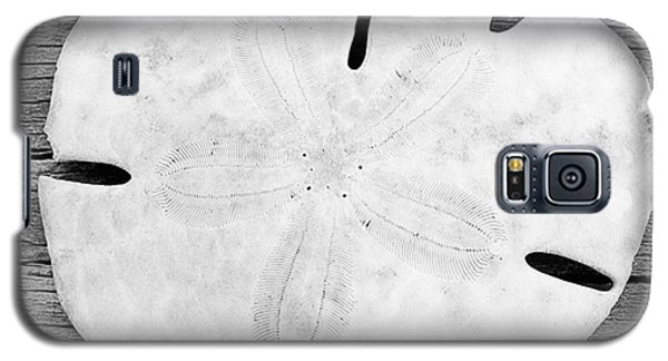 Sand Dollar Galaxy S5 Case