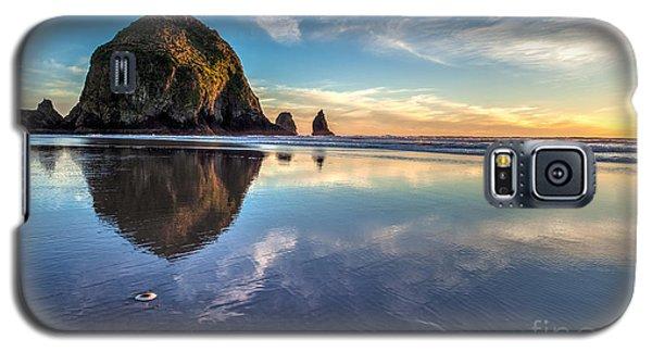 Sand Dollar Sunset Repose Galaxy S5 Case