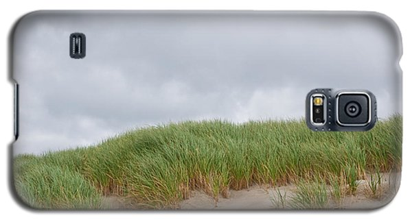 Sand Dunes And Grass Galaxy S5 Case