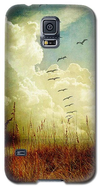 Sand Dunes And Pelicans Galaxy S5 Case by Linda Olsen
